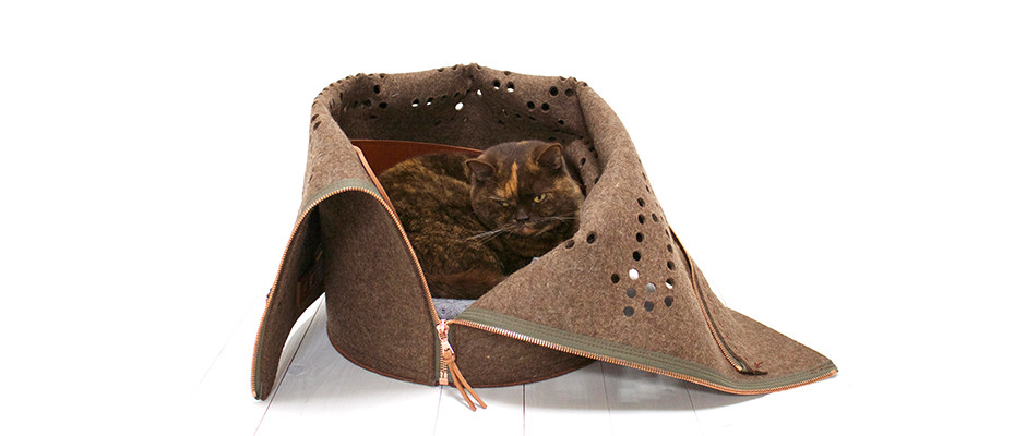 Cat_sleep_basket